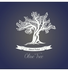 Isolated greece olive oil tree with branches vector image vector image