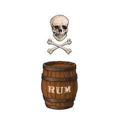 wooden rum barrel skull cross bones set vector image