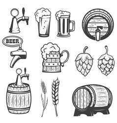 beer mugs wooden barrels hop wheat isolated vector image