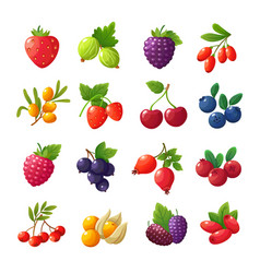 cartoon berries strawberries raspberries vector image