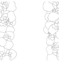 iris flower outline border on white background vector image