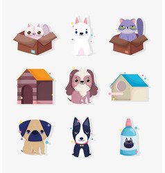 little dogs cats domestic cartoon animal vector image