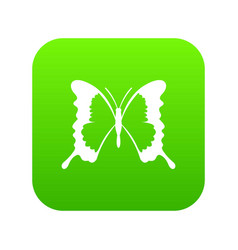 Swallowtail butterfly icon digital green vector