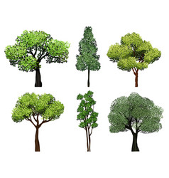trees collection green plants with leaves ecology vector image