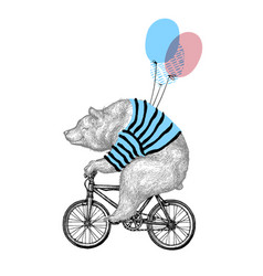 bear ride bicycle balloon vector image