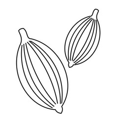 Cardamom icon outline style vector