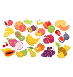 Fruits set fresh organic summer tropical food vector