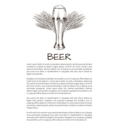 glass of beer and wheat refreshing alcohol drink vector image
