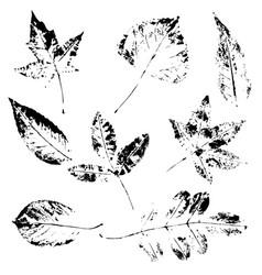 Imprint sheet set vector