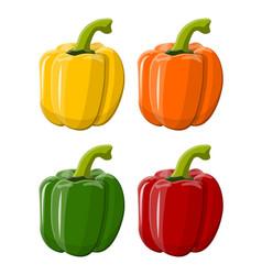pepper bell vegetable isolated on white background vector image