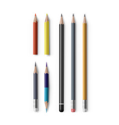 realistic sharpened pencils of with eraser vector image