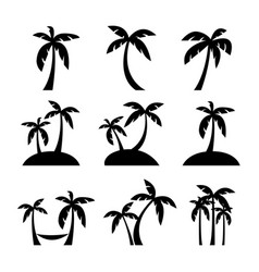 set coconut or palm trees with islands vector image