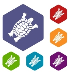 Turtle icons set vector image