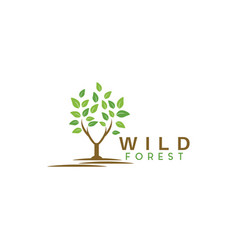 wild forest logo graphic design template vector image