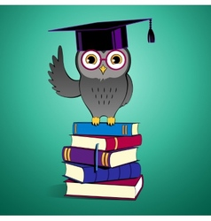 Owl sitting on books vector image