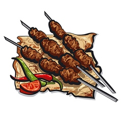 Kebab with pita vector