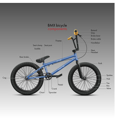 labeled bmx bicycle components vector image