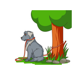 Sad abandoned dog with lead tied to tree vector