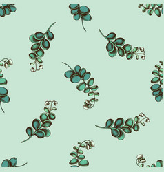 seamless pattern with hand drawn colored kalanchoe vector image