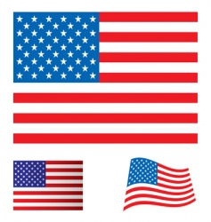 Usa flag set vector