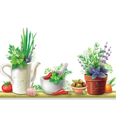 Still life with garden herbs vector image