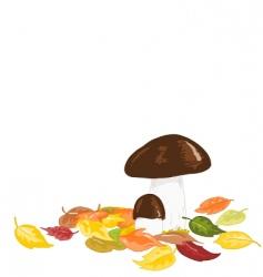 autumn mushrooms vector image vector image