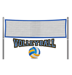 Beach volleyball net and ball vector