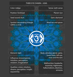 chakras symbols with meanings infographic vector image