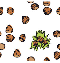 food collection hazelnuts seamless pattern vector image