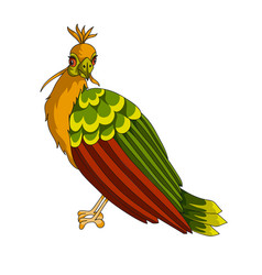 hoatzin exotic bird icon vector image
