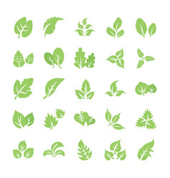 leaf flat icon pack vector image