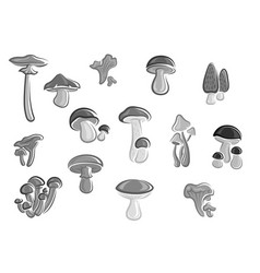 mushrooms edible champignons morel icons vector image