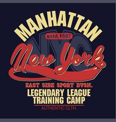 T-shirt stamp graphic new york sport wear vector