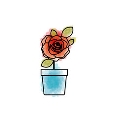 watercolor drawing of flowered red rose with vector image