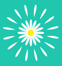 white daisy chamomile flower round icon cute vector image