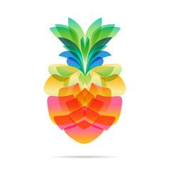 Pineapple design on white vector