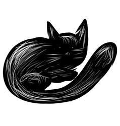 Black cat isolated on white vector image