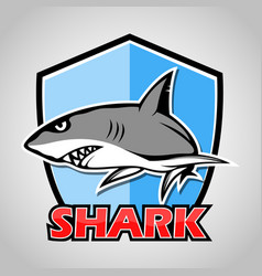 cartoon shark with blue shield vector image
