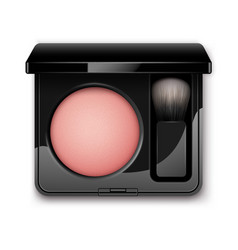 blusher in case with makeup brush applicator vector image vector image