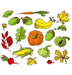 autumn set with bright leaves fall season vector image vector image