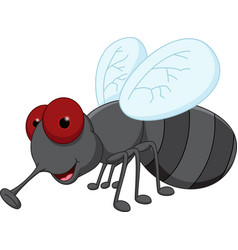 cute fly cartoon vector image
