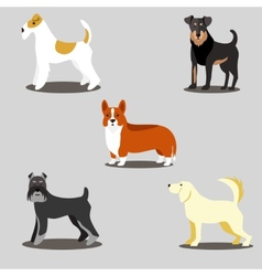 Dogs set of icons and vector image