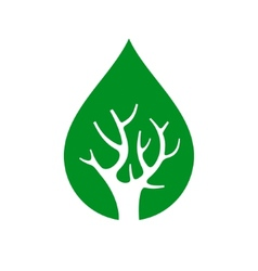 Eco Tree inside Drop Logo Isolated On White vector image