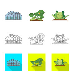 Isolated object of greenhouse and plant logo set vector