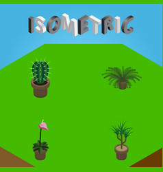 Isometric plant set of plant grower peyote and vector