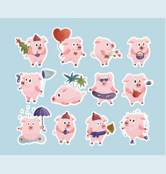 New year 2019 set with christmas pigs vector