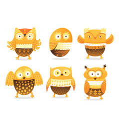 owls cute birds character set isolated on vector image