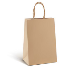 Paper kraft shopping bag isolated on white 3d vector