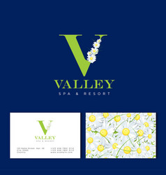 v letter chamomile spa cosmetic seamless pattern vector image