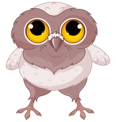Baby Owl vector image vector image